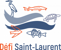 Logo_version fluviale_RGB